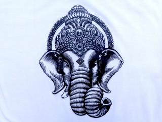 TSrt23 T-Shirt Ganesh